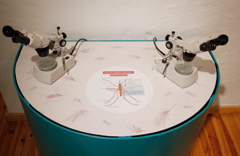 s22sk-mikroskoobid